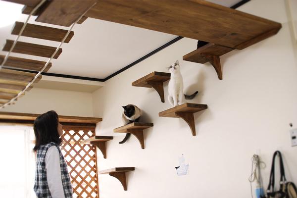 猫も快適に過ごせるペット可マンションへリフォーム・リノベーション - 郡山市のオーダーメイドする賃貸