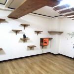 猫棚、はしごで猫ちゃんの運動不足解消!室内でペットを飼う時の悩みをリノベーションで解決!