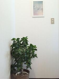 玄関を入ってすぐ目に入る壁には、観葉植物やフォトフレームを使ってオシャレに♪