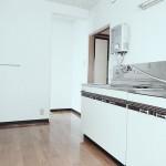 広いキッチンがオススメポイント!シンク下の扉を外してカーテンを付ける「キッチンスカート」を着ければ一気にオシャレになります♪